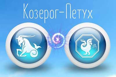 Восточно-Зодиакальный гороскоп 2019 Козерог