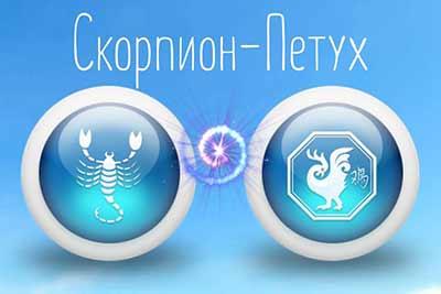Скорпион рожденный в год петуха характеристика для мужчины и женщины